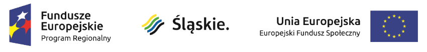 Logotyp EFS Śląskie